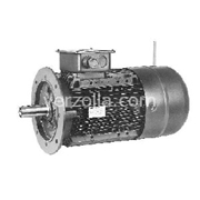 HBZ80C2-230400-50 B5R-IP55,L